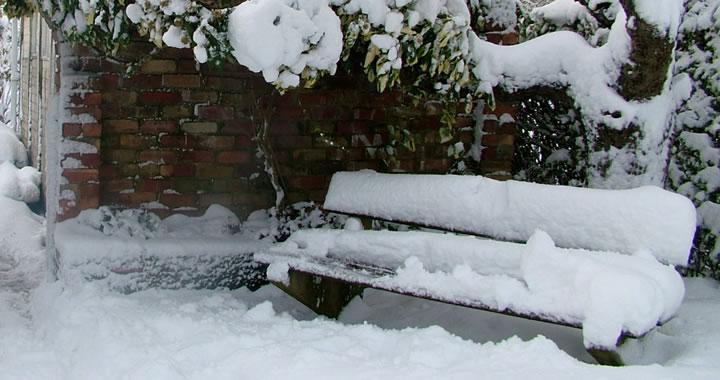 Tuin onderhoud januari